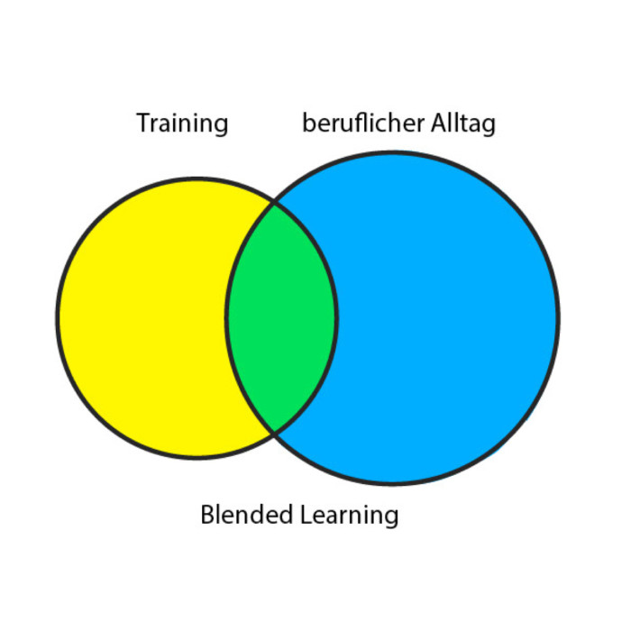 Blended Learning Diagramm