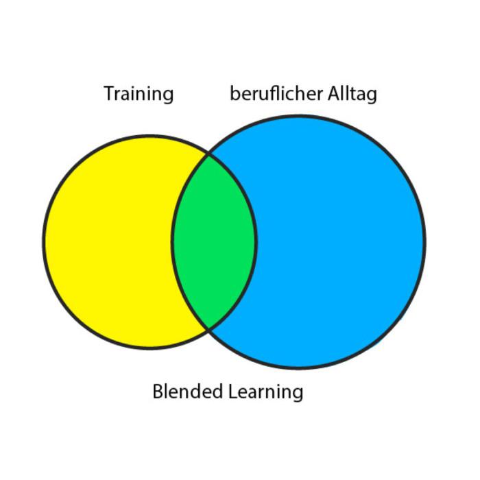 Blended Learning Diagramm
